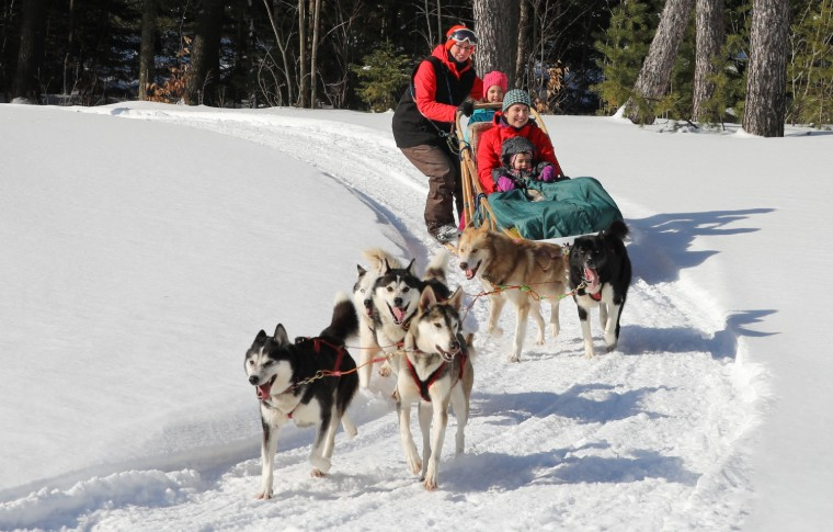 Dogs running pulling a sled with guests